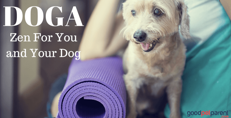 DOGA Zen for you and your dog feature image